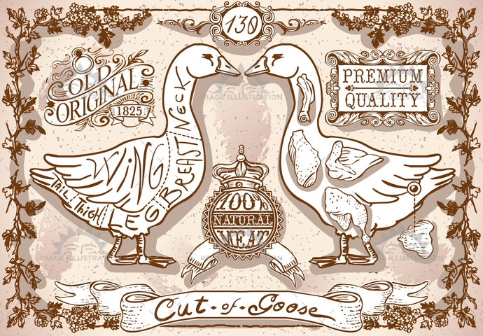 aged, american, ancient, antique, background, banner, ButcherShop, butchery, chicken, creature, cuisine, decoration, duck, food, freehand, gastronomy, goose, handwriting, meat, menu, old, organic, page, pastel, retro, typography, vintage, white