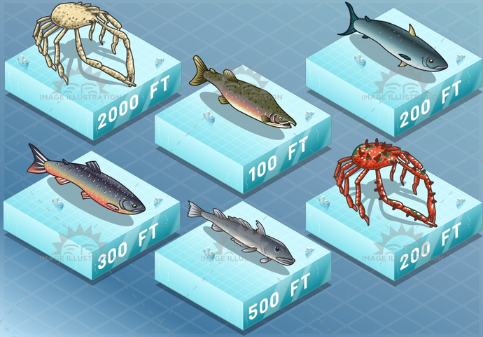 animal, background, char, climate, codfish, collection, crab, crustacean, depth, drawing, fauna, fish, fishing, food, freshness, isolated, isometric, marine, nature, ocean, salmon, scene, sea, seafood, tuna, undersea, underwater, wild