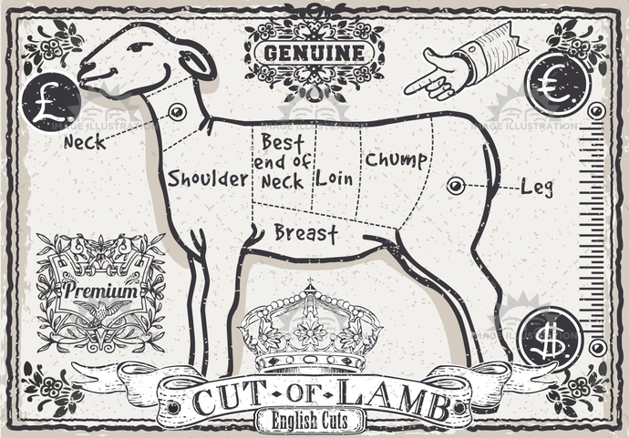 aged, ancient, antique, background, banner, butcher, butchery, crayon, cuisine, cuts, decoration, english, food, freehand, gastronomy, handwriting, lamb, meat, menu, mutton, old, organic, pastel, retro, sheep, shop, typography, vintage