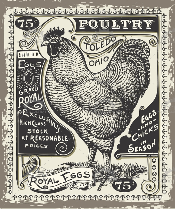 Advertising Poultry 02 Vintage 2D - Image Illustration