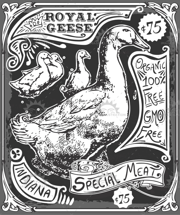 america, antique, background, banner, blackboard Advertising, butcher, butchery, chicken, cuisine, decoration, duck, food, free, freehand, gastronomy, gmo, goose, handwriting, illustration, indiana, meat, menu, old, organic, page, retro, shop, typography, vector, vintage