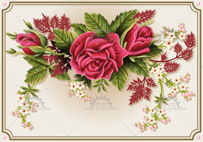 background, beautiful, beauty, blossom, border, bud, corner, decoration, design, drop, floral, flower, frame, green, illustration, isolated, leaf, nature, pattern, petal, pink, plant, red, retro, rose, roses, victorian, vintage, white