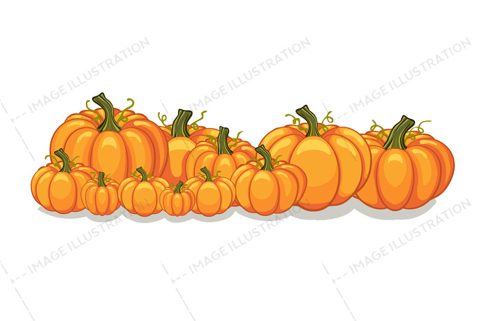 autumn, backdrop, background, banner, border, cartoon, collection, corner, day, decoration, decorative, design, e-commerce, ecommerce, farm, food, frame, graphic, halloween, harvest, holiday, homepage, horizontal, illustration, isolated, landing page, layout, market, night, october, orange, ornament, patch, pile, pumpkin, sale, season, set, simple, site, template, thanksgiving, vector, vegan, vegetable, web, website, white